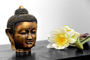 Buddha und Lotusblüte